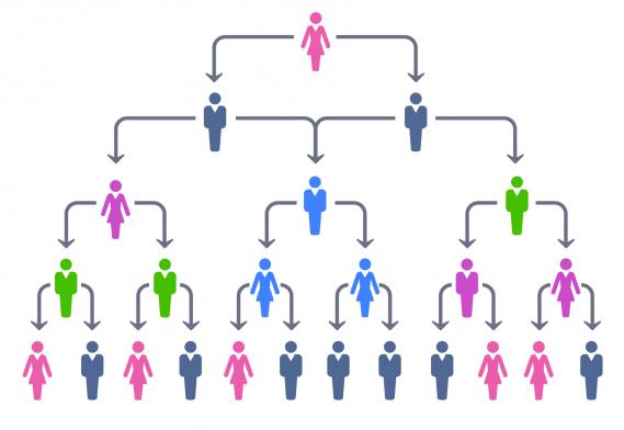 Tipos De Estructuras Organizacionales Losrecursoshumanos Com