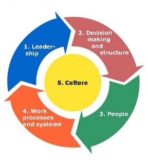 Efectividad Organizacional Empresa
